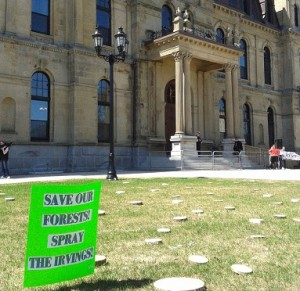 legislature lawn with spray Irving sign