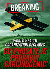 glyphosate probably carcinogenic