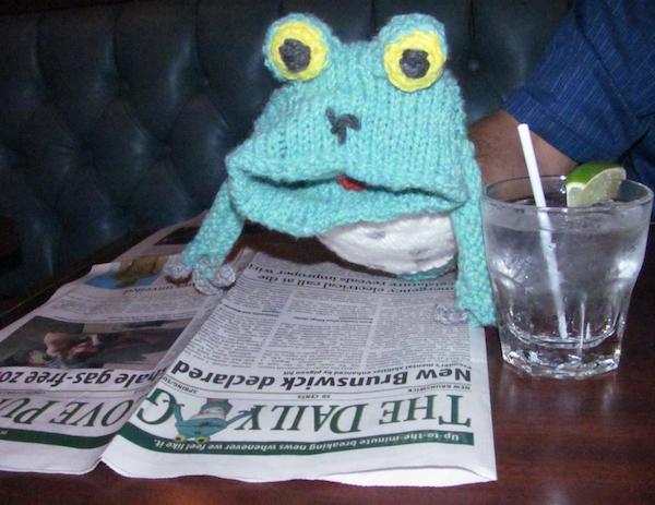 Frog2-brief