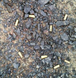 Pic 5 - shell casings on ground-1
